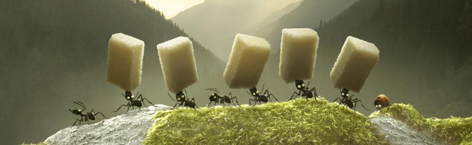 Critique – Minuscule : La Vallée des fourmis perdues