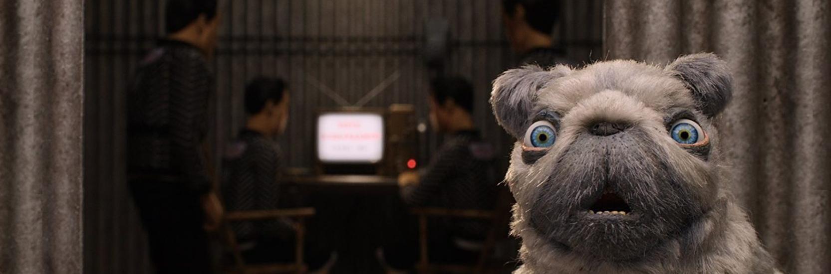 """Les voix et les animateurs de """"L'Île aux chiens"""" se révèlent dans deux vidéos et un making of 360° !"""